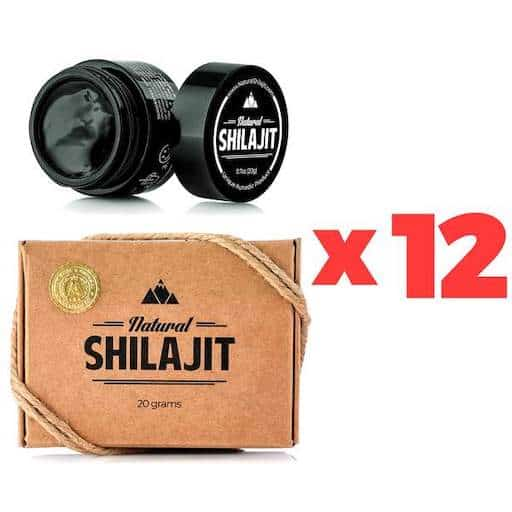 Shilajit-Honey-175-sticks